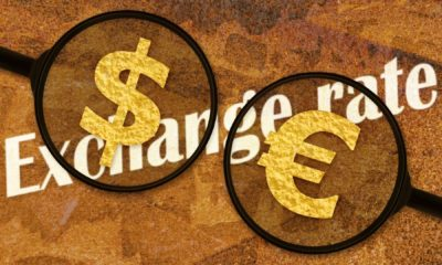 How the US and Europe's COVID-19 Responses Have Affected Exchange Rates 56