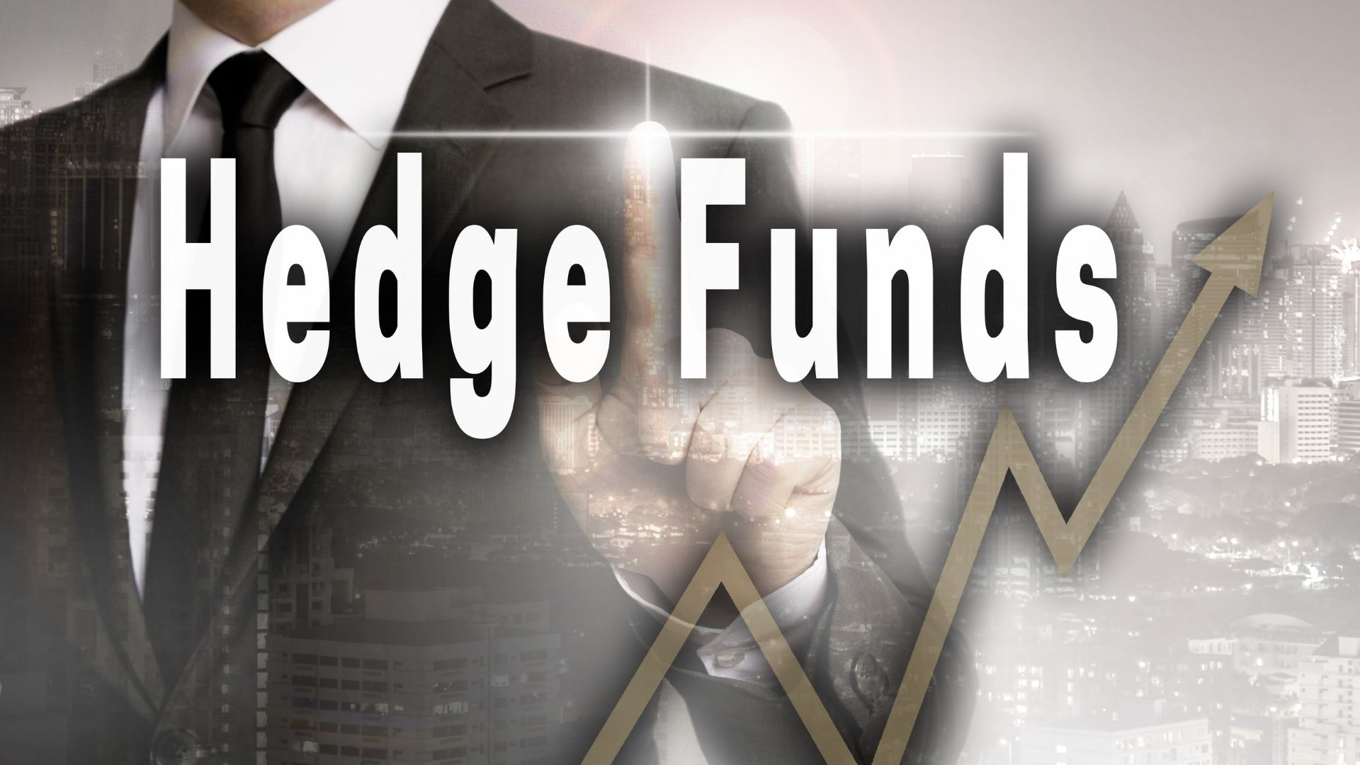What Is A Hedge Fund 14
