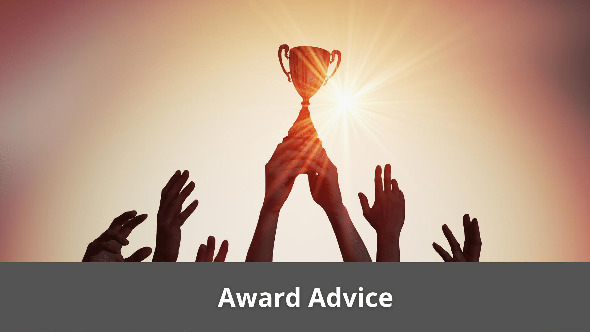 Award Advice - Financial Services Can Qualify For Tax Shelters 41