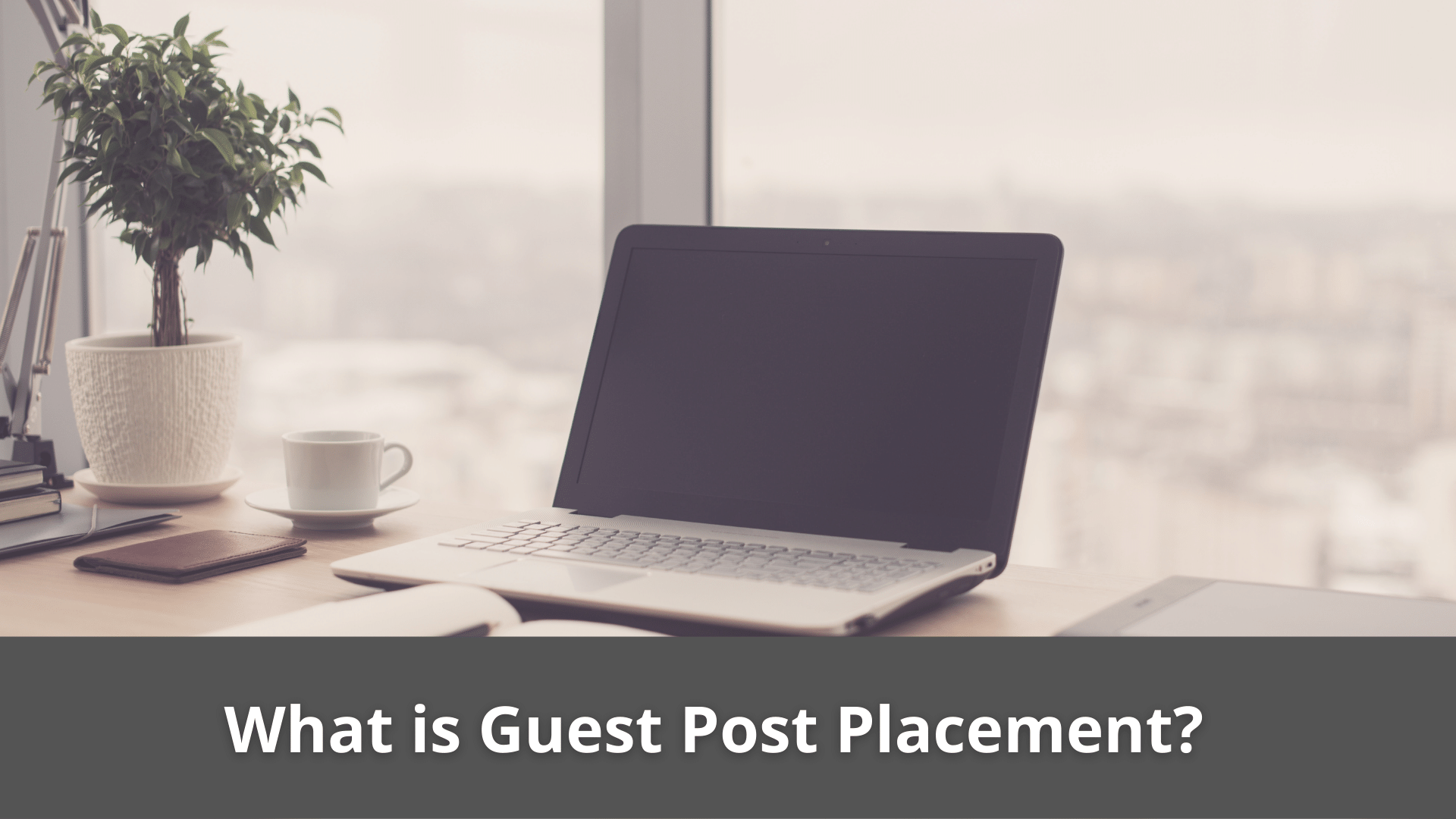 What is Guest Post Placement? 39