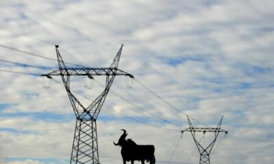 Explainer-Global energy shortage or a coincidence of regional crises? 59