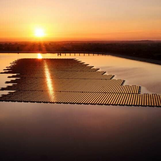 Lightsource BP to enter Polish renewables market 41